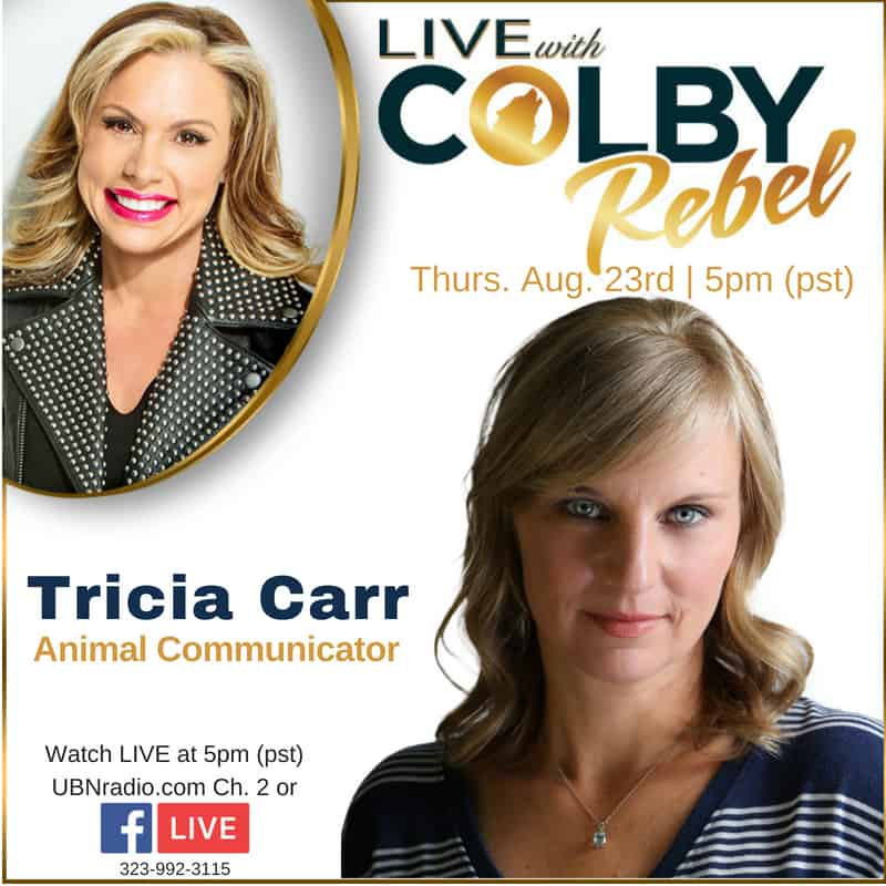 Live with Colby Rebel - Tricia Carr
